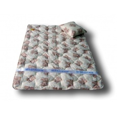 Одеяло детское Традиция Сказочные сны 300 + подушка 40*40